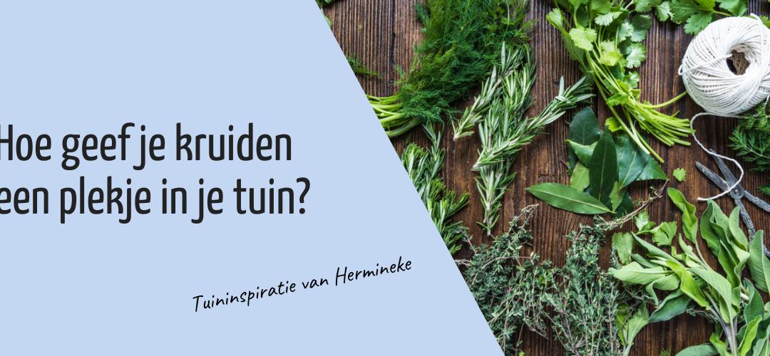 Hoe geef je kruiden een plekje in je tuin?