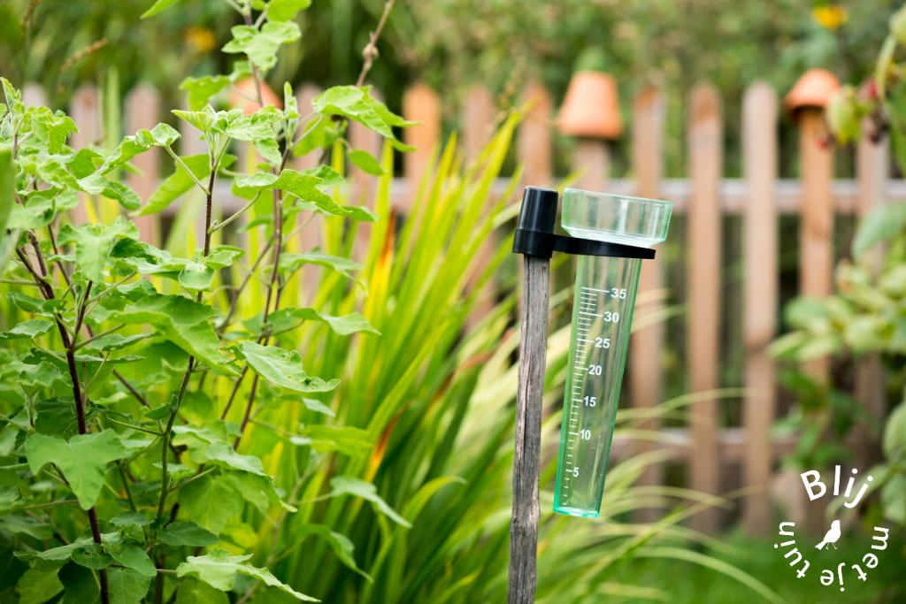 droogte in de tuin