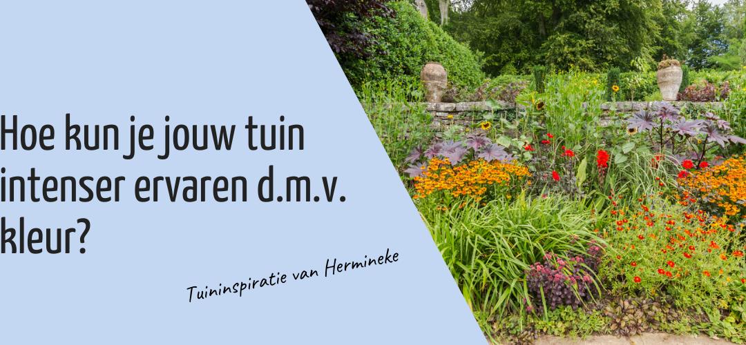 Hoe kan je jouw tuin intenser beleven d.m.v. kleur? – Zintuigen in de tuin