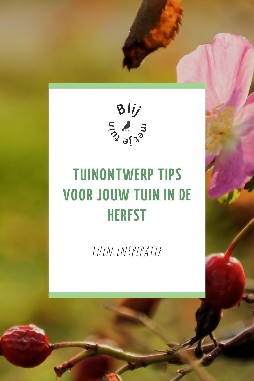 tuinontwerp tips voor de herfst