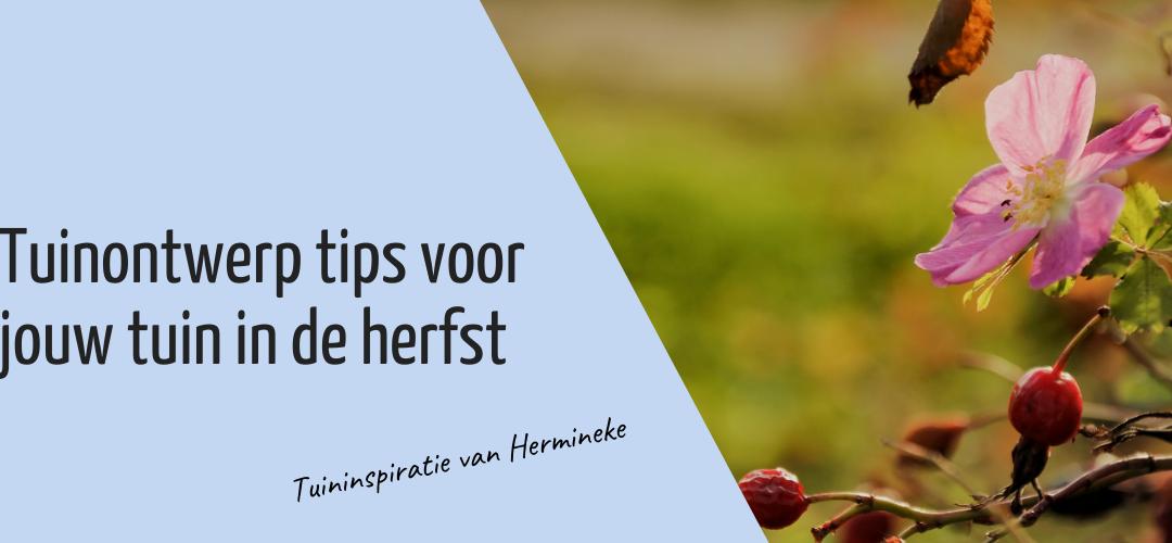 Tuinontwerp tips voor jouw tuin in de herfst