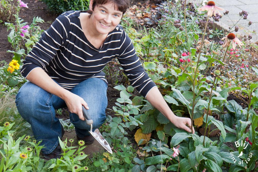 voortuin inrichting blij met je tuin